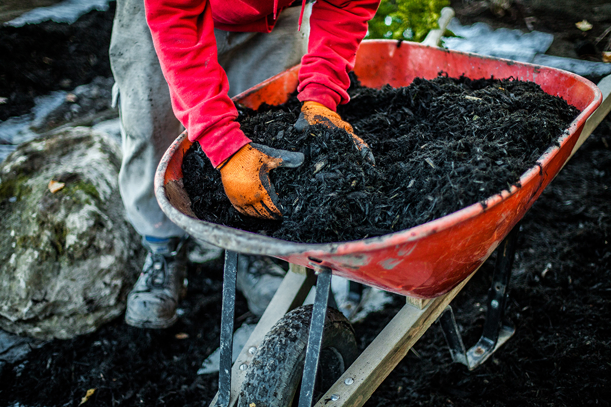 Why Mulch?  Five Major Benefits of Mulching in the Garden